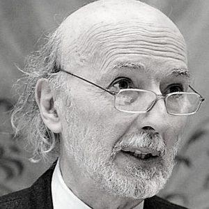 Domenico Secondulfo è professore di Sociologia generale e di Sociologia dei processi culturali nelle Facoltà di Lettere e Filosofia ed Economia dell'Università di Verona. Si occupa da diversi anni di tematiche legate al mutamento sociale, al consumo e alla comunicazione.